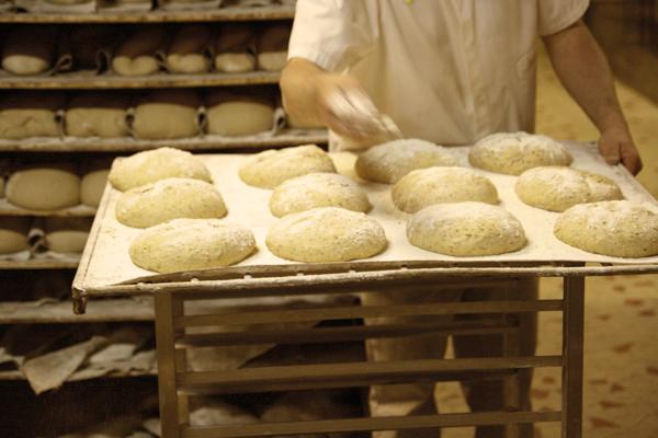 Terminaux de cuisson fournisseur pains pr t lever pr t for Fournisseur materiel restauration rapide